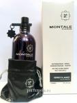 Montale Greyland TESTER unisex